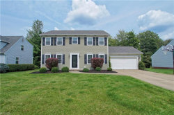 Photo of 1101 Sharonbrook Dr, Twinsburg, OH 44087 (MLS # 4027844)