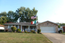 Photo of 551 Blossom Ave, Campbell, OH 44405 (MLS # 4028566)