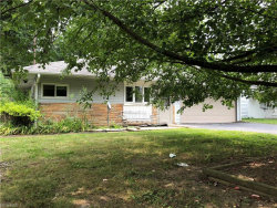 Photo of 233 North Roanoke Ave, Youngstown, OH 44515 (MLS # 4028856)