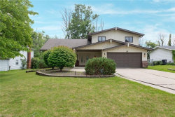 Photo of 32000 Cannon Rd, Solon, OH 44139 (MLS # 4029114)