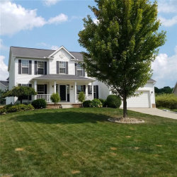 Photo of 5369 Meadow Park Dr, Brimfield, OH 44240 (MLS # 4029462)