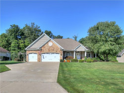 Photo of 8196 Rainbow Dr, Concord, OH 44077 (MLS # 4032790)