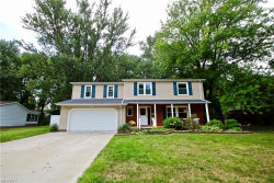 Photo of 8766 Pinewood Ct, Mentor, OH 44060 (MLS # 4035379)