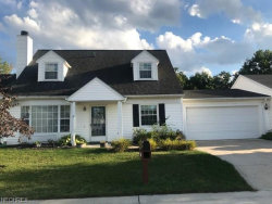 Photo of 9814 Willow Lane Ln, Unit P-2, Concord, OH 44060 (MLS # 4035526)