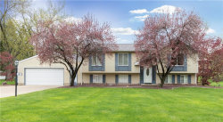 Photo of 48 Skyline Dr, Canfield, OH 44406 (MLS # 4036448)