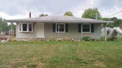 Photo of 9129 Horn Rd, Windham, OH 44288 (MLS # 4036631)