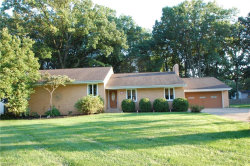 Photo of 245 Moreland Dr, Canfield, OH 44406 (MLS # 4038165)