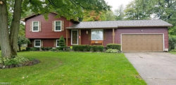 Photo of 2100 Penny Ln, Austintown, OH 44515 (MLS # 4039092)