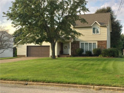 Photo of 3050 Saginaw Dr, Poland, OH 44514 (MLS # 4039218)