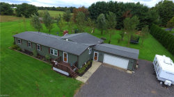 Photo of 3579 Sodom Hutchings Rd, Cortland, OH 44410 (MLS # 4045215)