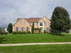 Photo of 7485 Sotogrande Ct, Solon, OH 44139 (MLS # 4045714)
