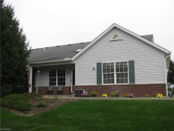 Photo of 9207 Hickory Ridge Dr, Streetsboro, OH 44241 (MLS # 4045918)