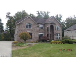 Photo of 2982 Abrams Dr, Twinsburg, OH 44087 (MLS # 4047163)