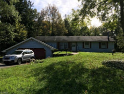 Photo of 3885 Shields Rd, Canfield, OH 44406 (MLS # 4047761)