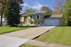 Photo of 9785 South Delmonte Blvd, Streetsboro, OH 44241 (MLS # 4047790)