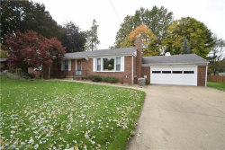 Photo of 230 Glenview Rd, Canfield, OH 44406 (MLS # 4048270)