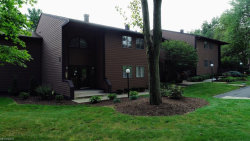 Photo of 1175 Calla Rd, Unit A124, Poland, OH 44514 (MLS # 4050176)
