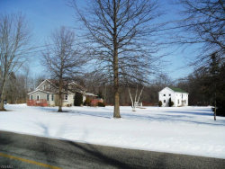 Photo of 9702 Nichols Rd, Freedom, OH 44288 (MLS # 4050482)