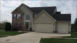 Photo of 1002 Crestview Cir, Kent, OH 44240 (MLS # 4050561)