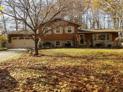 Photo of 3795 Martha Rd, Kent, OH 44240 (MLS # 4052291)
