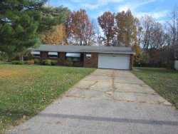 Photo of 6233 Bryson Dr, Mentor, OH 44060 (MLS # 4053496)