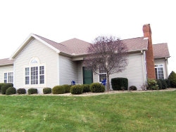 Photo of 5645 Clingan Rd, Unit 19B, Struthers, OH 44471 (MLS # 4054545)