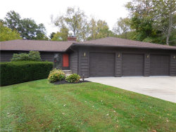 Photo of 7290 South Meadow Dr, Concord, OH 44077 (MLS # 4055531)