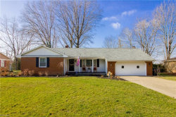 Photo of 610 Blueberry Hill Dr, Canfield, OH 44406 (MLS # 4056572)
