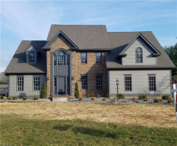 Photo of 7555 Cobblers Run, Poland, OH 44514 (MLS # 4056981)