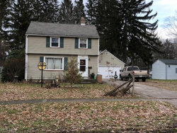 Photo of 1066 West Riddle Ave, Ravenna, OH 44266 (MLS # 4058226)