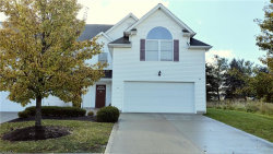 Photo of 16481 Cottonwood Pl, Middlefield, OH 44062 (MLS # 4058619)