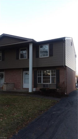 Photo of 4165 New Rd, Austintown, OH 44515 (MLS # 4059681)