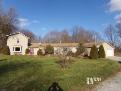 Photo of 1515 Coit Rd, Lowellville, OH 44436 (MLS # 4060553)