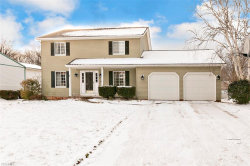 Photo of 9628 Brayes Manor Dr, Mentor, OH 44060 (MLS # 4062975)