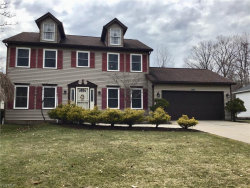 Photo of 1232 Sharonbrook Dr, Twinsburg, OH 44087 (MLS # 4063495)