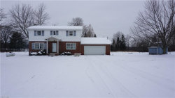 Photo of 4921 Industry Rd, Rootstown, OH 44266 (MLS # 4064980)