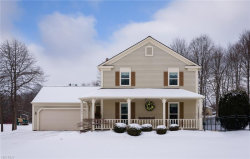 Photo of 31988 South Roundhead Dr, Solon, OH 44139 (MLS # 4066265)