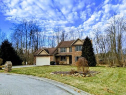 Photo of 4334 Shannon Dr, Rootstown, OH 44272 (MLS # 4066962)
