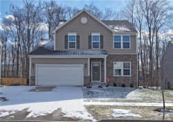 Photo of 1563 Crescent Dr, Streetsboro, OH 44241 (MLS # 4068038)