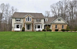 Photo of 8682 Chase Dr, Chagrin Falls, OH 44023 (MLS # 4068742)