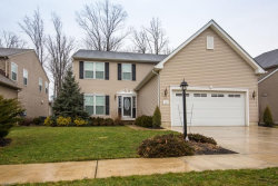 Photo of 3723 Firethorn Dr, Aurora, OH 44202 (MLS # 4068814)