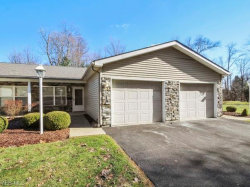 Photo of 361 Meadowbrook Ave, Unit 5, Boardman, OH 44512 (MLS # 4069059)