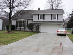Photo of 9106 Gettysburg Dr, Twinsburg, OH 44087 (MLS # 4069419)
