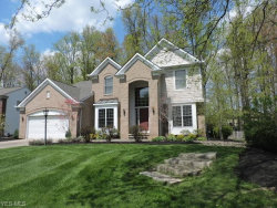 Photo of 2938 Granby Cir, Twinsburg, OH 44087 (MLS # 4069723)
