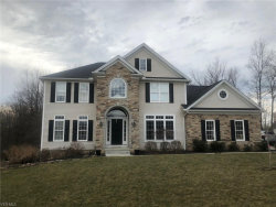 Photo of 30 Lake Wobegon Ct, Canfield, OH 44406 (MLS # 4077591)