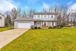 Photo of 473 South Briarcliff Dr, Canfield, OH 44406 (MLS # 4078064)