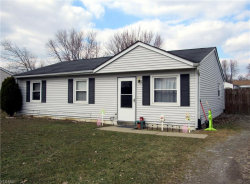 Photo of 9881 Bright Dr, Windham, OH 44288 (MLS # 4078950)