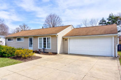 Photo of 9156 Briar Dr, Streetsboro, OH 44241 (MLS # 4079276)