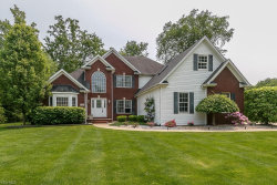 Photo of 6040 Nature View Ct, Concord, OH 44077 (MLS # 4079847)