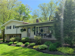 Photo of 7179 West Middletown Rd, Canfield, OH 44406 (MLS # 4080300)